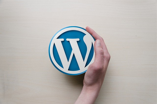 must have plugins for new wordpress blog